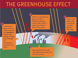 green house effect essay greenhouse effect jpg