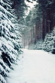 landscapes winter snow mobile wallpaper 1110 views preview 1294 views