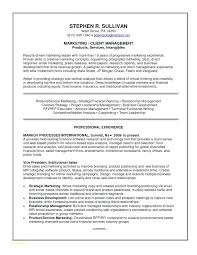 Banking Resume Examples Fascinating Customer Service Representative Resume Sample Customer Service Rep