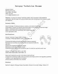 Functional Resume Builder Best Of 50 Free Printable Resumes Graphics