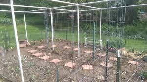 bird netting for garden. Perfect Garden Garden Totally Enclosed By PVC Chicken Wire Bird Netting For