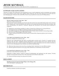 summary examples for resumes