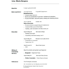 Copy And Paste Resume Templates Stunning Copy And Paste Resume Templates Copy Resume Template For Free