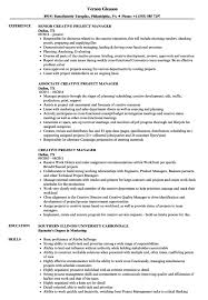 Project Managersume Samples Technical Sample Doc Curriculum Vitae Cv ...