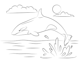Killer Whale Printable Coloring Pages