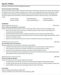 Business Project Manager Resume Template Professional