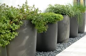 22 large outdoor planters for trees accurate large outdoor planters for trees modern best ready