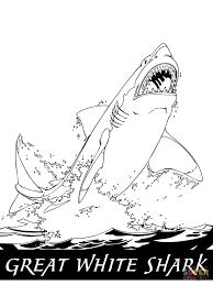Coloriage Grand Requin Blanc Qui Saute Hors De L Eau Coloriages