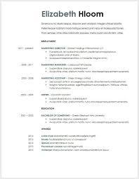 Resume Template For Google Docs Template Business Idea
