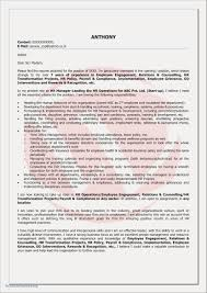 High School Student Resume Templates No Work Experience Awesome