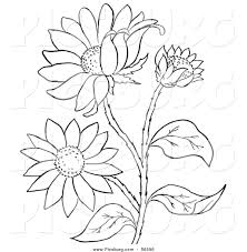 Small Picture Plants Coloring Pages Pilular Coloring Pages Center