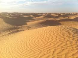 """Résultat de recherche d'images pour """"image de désert"""""""