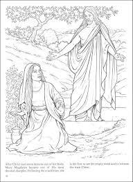 nav women of the coloring book main photo cover nav nav