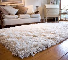 image of how to clean a wool rug