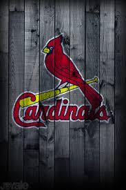 st louis cardinals i phone wallpaper by addaminsane