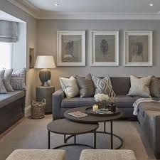 Gray couch living room