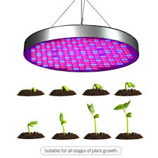 Best Led Light For Plant Growth 50w Red Blue Spectrum Plant Grow Lights Ufo Shape 250 Leds Indoor Plants Growing Lamp Bulbs For Germination Vegetative Flowering