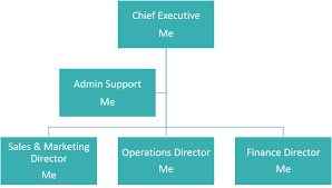Why Every Solopreneur Needs An Organisation Chart Success