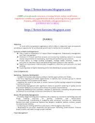 Mba Finance Resume Sample For Freshers Mba Finance Resume Sample