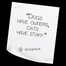 Best Pet Quotes. QuotesGram via Relatably.com