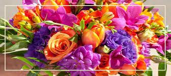 true beauty love flowers pics hd free