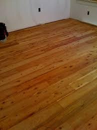 australian cypress at a room floor