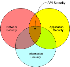 What Is Api Security Manning
