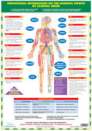 Alcohol Abuse Chart Jan Roscoe Publications Categories Posters Wall Charts