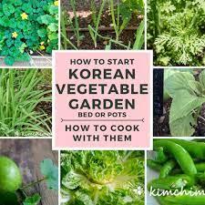 korean vegetable garden archives