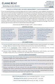 Sample Of Executive Resumes Executive Resume Examples