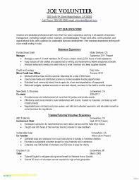 Mla Format For College Essay Lividrecords