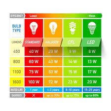 Sup Comparison Chart Light Bulb Comparison Chart Infographic Stock Vector