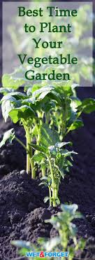 many vegetables require diffe weather for planting find out when the best time is to
