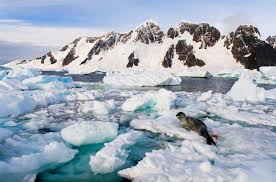 antarctic ice sheet growing theory for why antarctic sea ice is growing
