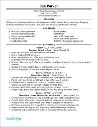 Barback Resume Impressive Barback Resume Examples Barback Resume Skills Resume