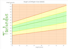 Height Weight Ratio Chart Adult Height To Weight Chart Height To Weight Ratio Chart