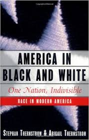 America in Black and White: One Nation, Indivisible: Thernstrom, Stephan,  Thernstrom, Abigail: 9780684809335: Amazon.com: Books