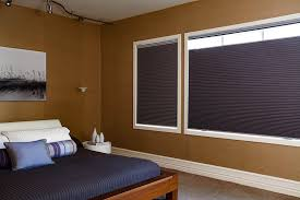 Trends Cellular Shades Vs Roller Shades Powerfulpizzaclub
