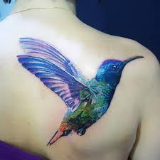 татуировка колибри колибри пожалуй самое маленькое и