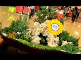 Small Picture Dish garden decorating ideas YouTube
