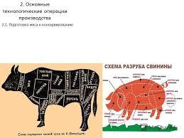 Презентация на тему Курсовая работа по дисциплине Сырье и  Основные технологические операции производства 2 1 Подготовка мяса к консервированию