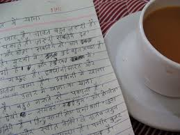 hindi essay on n food it s enthralling laurel flickr