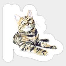 Bengal Cat Ii