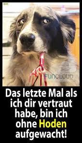 Hund Beißt Mann Halb Tot Kostenlose Lustige Bilder Für Whatsapp