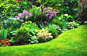 Small Picture Perennial Flower Garden Designs Images About Perennial