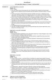 Principal Analyst Resume Samples Velvet Jobs