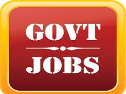 Image result for Govt Job