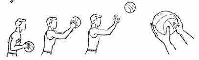 Реферат Баскетбол Рис 1 Ловля мяча двумя руками Держание баскетбольного мяча Ловля высоко летящего мяча выполняется аналогичным образом с той лишь разницей