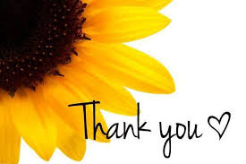 Image result for thank you sun