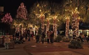 outdoor solar decorations string lighting on palm trees in wilmington outdoor lights for full size of sophisticated garden string lights with delightful